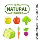 vegetable and fruit natural... | Shutterstock .eps vector #1422364487