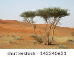 acacia tree in wadi sumayni ... | Shutterstock . vector #142240621