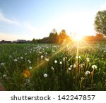 Sunset Over Meadow With...