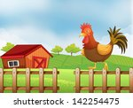illustration of a rooster above ... | Shutterstock . vector #142254475