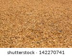 Lawn Strewed By Wooden Chips