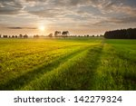 rural landscape. field and grass | Shutterstock . vector #142279324