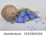 Bouquet Of Blue Flax Flowers...