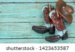 Teal And Burnt Red Cowboy Boot...