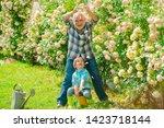 gardening   grandfather... | Shutterstock . vector #1423718144