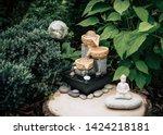 Small Home Garden Private...
