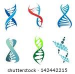 human dna and molecule symbols... | Shutterstock .eps vector #142442215