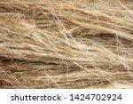 Horizontal Dry Flax Fibers ...
