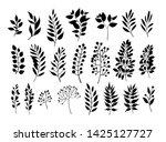 silhouettes of leaves set.... | Shutterstock .eps vector #1425127727