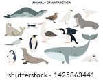big collection of adorable wild ... | Shutterstock .eps vector #1425863441