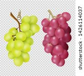 realistic grapes isolated on... | Shutterstock .eps vector #1426114037