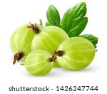 Small photo of Isolatec gooseberries. Bunch of green gooseberries isolated on white background with clipping path