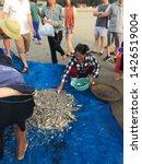 Morning At Seafood Market At...
