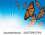 flying orange and black plain... | Shutterstock . vector #1427091791
