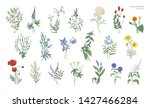 set of realistic detailed... | Shutterstock . vector #1427466284