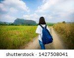 young cute asian japanese girl...   Shutterstock . vector #1427508041