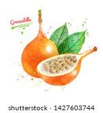 watercolor hand drawn... | Shutterstock . vector #1427603744