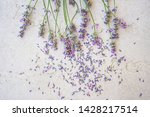 lavender flowers and petals on... | Shutterstock . vector #1428217514