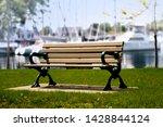 Wooden Park Bench Beside A...