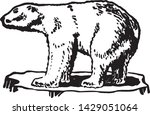 polar bear   retro ad art... | Shutterstock .eps vector #1429051064