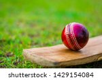 Red Cricket Ball With Bat