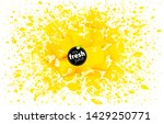 pieces of mango with a splash... | Shutterstock .eps vector #1429250771