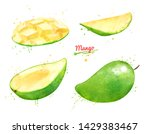 watercolor set of illustrations ... | Shutterstock . vector #1429383467