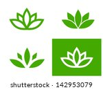 Simple Green Lotus Plant   Set...