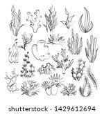 vector illustration of outline... | Shutterstock .eps vector #1429612694