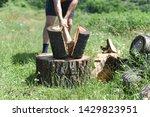 Lumberjack Chopping Wood For...