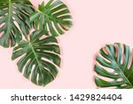 Tropical Palm Leaves Monstera...