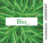 bio market  bio products...   Shutterstock .eps vector #1430029337