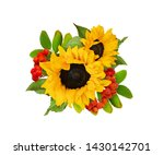 Decorative Sunflowers And Riwan ...