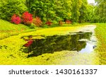 autumn forest duckweed river... | Shutterstock . vector #1430161337