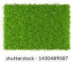 grass background texture. fresh ... | Shutterstock . vector #1430489087