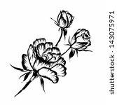 rose motif pattern on white... | Shutterstock . vector #143075971