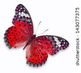Red Butterfly Isolated On Whit...