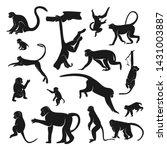 set of monkey design vector....