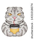 Funny Cat With Coffee Cup....