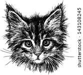 Stock vector portrait of cat 143108245