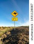 an iconic kangaroo road sign... | Shutterstock . vector #1431128087