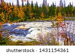 autumn forest river scene view. ... | Shutterstock . vector #1431154361