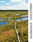 Mukri bog nature trail, Estonia. A boardwalk leads the way through the bog.