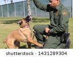 yuma sector  ariz.   us   april ...   Shutterstock . vector #1431289304