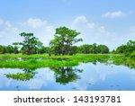 Atchafalaya River Basin  With...