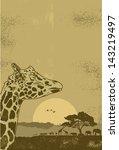 grunge safari poster  vector   Shutterstock .eps vector #143219497