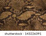 background snake skin. | Shutterstock . vector #143226391