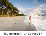 Tropical North Queensland  Tnq  ...