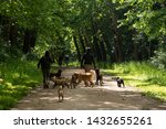 Stock photo dog walk service young man and woman unrecognizable back view walking out the dogs in vincennes 1432655261