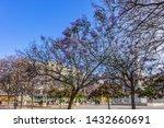 malaga  spain   june 2  2018 ...   Shutterstock . vector #1432660691